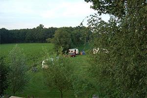 Overzicht van de camping